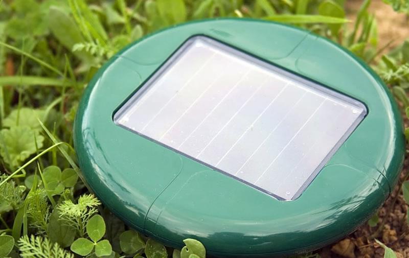 Solar-powered pest control equipment